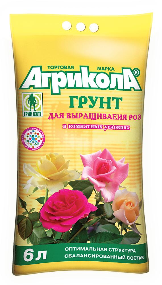 Удобрения для розы в домашних условиях
