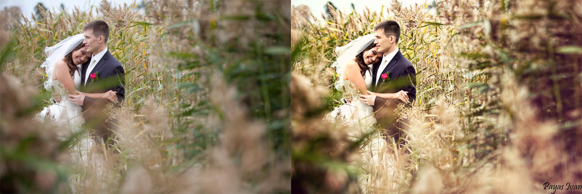 Как обрабатывать фото со свадьбы